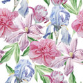 Seamless pattern with spring flowers. Peony. Clematis. Tulip. Iris. Watercolor.