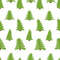 Seamless pattern with spruces on white background