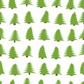 Seamless pattern with spruces on white background.
