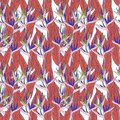 Seamless pattern with strelitzia flowers leaf sketch, black contour purple red green pink coral white background. simple ornament