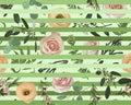Seamless pattern, stripes background, texture print vector. Pink rose flowers, eustoma cream, brunia, green fern, eucalyptus,