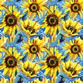 Seamless pattern with sunflowers. impressionism painting background. Royalty Free Stock Photo