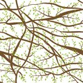 Seamless pattern tangled Brown branches with green leaves on blue sky, day background. abstract background for site, blog, fabric.