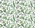 Seamless pattern, texture print with light watercolor hand drawn green eucalyptus ,forest fern, branches boxwood, brunia, buxus.