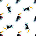 Seamless pattern with toucans. Can be used for textile, fabric. paper wrapping