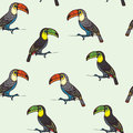 Seamless pattern with toucans.