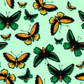 Seamless pattern with tropical butterflies Stock Images