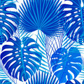Seamless pattern with tropical exotic palm leaves