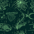 Seamless pattern with tropical fish, jellyfish, marine plants and seaweed. Vintage hand drawn vector illustration marine life.