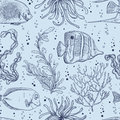 Seamless pattern with tropical fish, marine plants and seaweed. Vintage hand drawn vector illustration marine life.