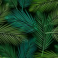 Seamless pattern with tropical leaves: palms, monstera, jungle leaf seamless vector pattern dark background. Swimwear botanical