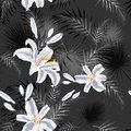 Seamless pattern with tropical leaves and white royal lilies flowers. Black and white palm leaves on the dark and colored flowers Royalty Free Stock Photo