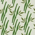 Seamless pattern with tropical plants bamboo and leaves . Vector Nature