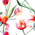 Seamless pattern with tulips flowers watercolor illustration Stock Photo