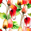 Seamless pattern with tulips flowers watercolor illustration Stock Image