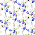 Seamless pattern with Tulips and Sweet pea flowers Royalty Free Stock Photo