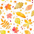 Seamless pattern with watercolor autumn leaves and splash. Royalty Free Stock Photo
