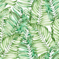 A seamless pattern with the watercolor branches of the leaves of a palm painted on a white background