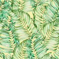 A seamless pattern with the watercolor  branches of the leaves of a palm painted on a yellow background Royalty Free Stock Photo