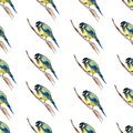 Seamless pattern with watercolor drawing birds,artistic painting ornament with titmouse at white background,hand drawn illustratio