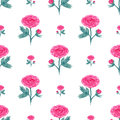 Seamless pattern with watercolor peony. Vector illustration with pink flowers. Floral background for web page, wedding invitations Royalty Free Stock Photo
