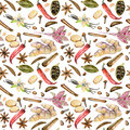 Seamless pattern with watercolor spices cinnamon, anise, caraway, cardamom, red pepper, ginger, vanilla and cloves