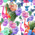 stock image of  Seamless pattern watercolor tropical flowers, palm tree and birds.