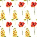 Seamless pattern with watercolour hand painted poppies and eremurus