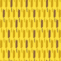 Seamless pattern with wheat harvest vector illustration autumn background Royalty Free Stock Photography