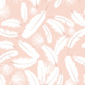 Seamless pattern white feathers Stock Photos