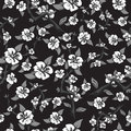 Seamless pattern of white flowers on a black background. Abstract blooming apple tree in black and white colors