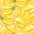 Seamless pattern of yellow bananas