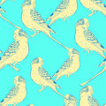 Seamless pattern Yellow face blue wavy parrot. Vector illustrati
