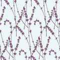 Seamless patterns of lavender