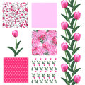 Seamless patterns set of elegant with decorative pink tulips dots curls and abstract flowers design elements Royalty Free Stock Image