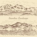 Seamless pictures of nature landscape. Vineyard or countryside illustrations