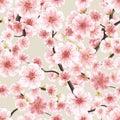 Seamless pink Sakura flowering cherry. EPS 10