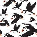 Seamless puffin birds pattern
