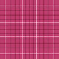 Seamless Raspberry Red Plaid Pattern Stock Photo