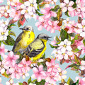 Seamless repeated floral pattern - pink cherry, sakura and apple flowers with birds. Watercolor Royalty Free Stock Photo