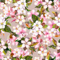 Seamless repeated floral pattern - pink cherry sakura and apple flowers. Watercolor