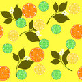Seamless repeating design with citrus fruits Stock Photo