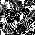 Seamless repeating pattern with silhouettes of palm tree leaves. Royalty Free Stock Photo