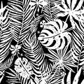 Seamless repeating pattern with white silhouettes of palm tree leaves in black background. Vector botanical illustration