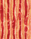 Seamless Repeating Strips of Bacon Stock Photography