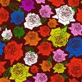 Seamless roses color pattern Stock Photo