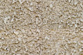 Seamless rough wall texture grey Royalty Free Stock Photo