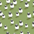 Seamless sheep Stock Photography