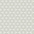 Seamless spider web pattern Royalty Free Stock Photography