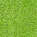 Seamless square texture - green moss Stock Photography